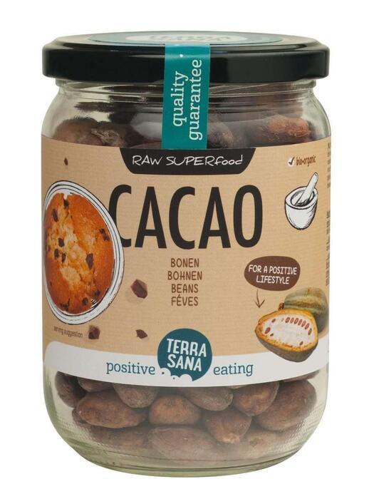 RAW Cacaobonen (in glas) TerraSana 250g (250g)