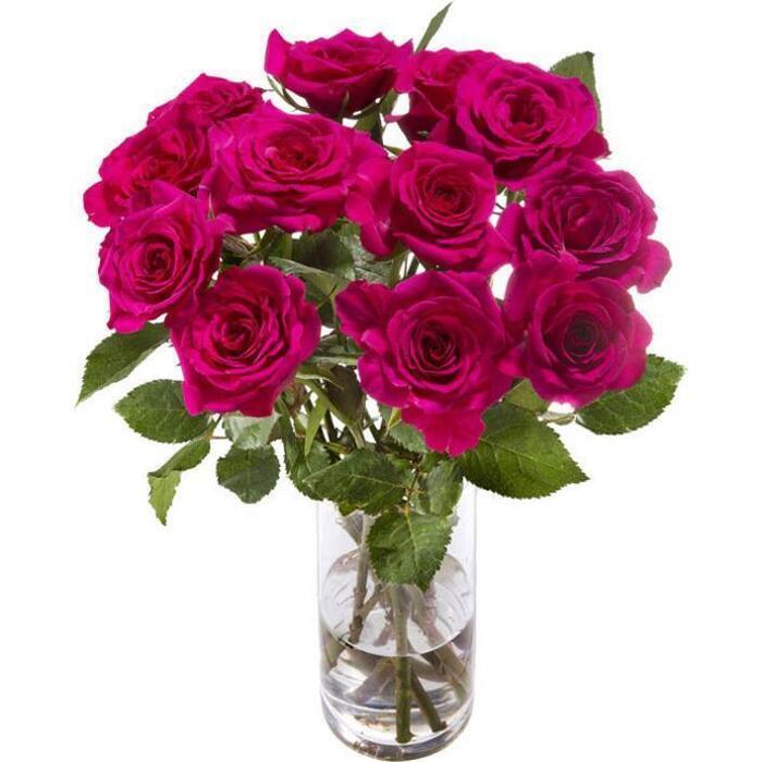AH Dozijn rozen roze