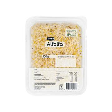 Jumbo Alfalfa 100 g (100g)