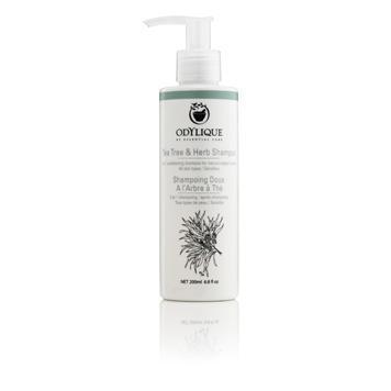 Tea tree & herb shampoo (200ml)