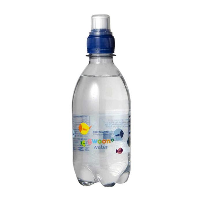 g'woon bronwater kids (33cl)