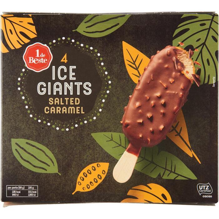 Ice giants salted caramel 4 stuks (36cl)
