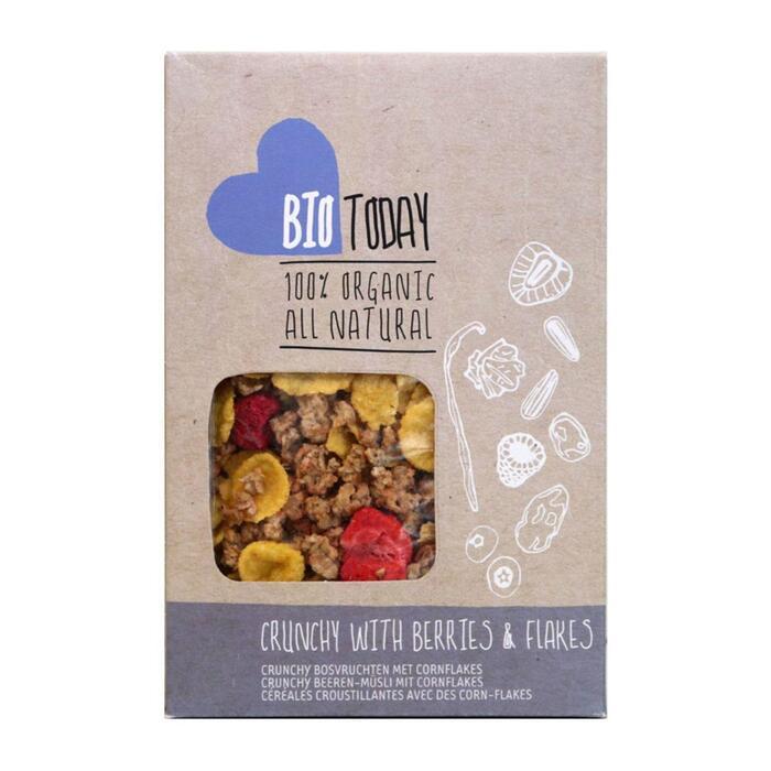 Cornflakes Crunchy Bosvruchten (Stuk, 325g)