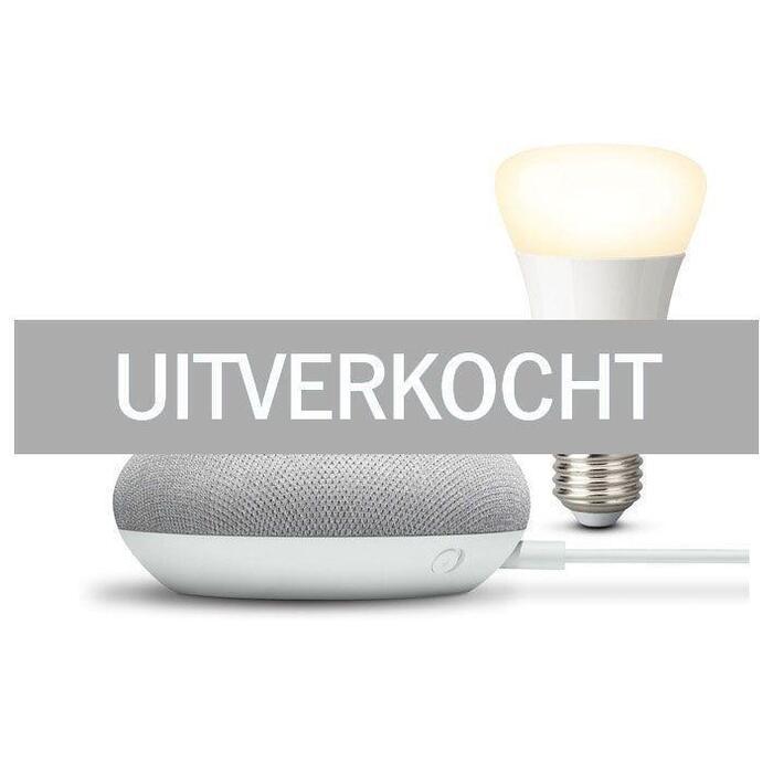 Philips Hue White bulb + Google Nest mini