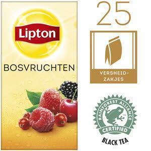 Lipton Thee Professioneel Forest Fruit (40g)