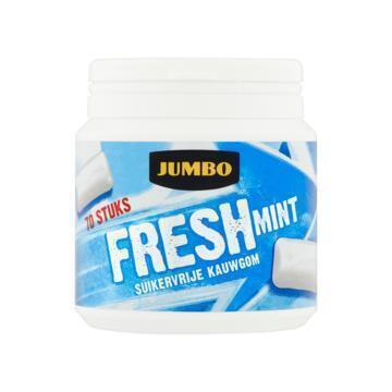 Jumbo Freshmint Suikervrije Kauwgom 70 Stuks 100 g (100g)