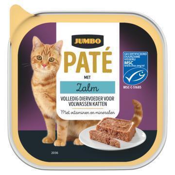 Jumbo Paté met Zalm 100g (100g)