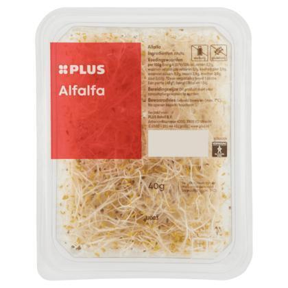 Alfalfa (bak, 40g)