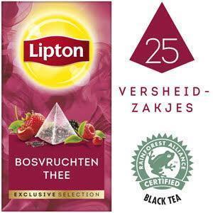 Lipton Excl Select Bosvruchten 25S 6x (43g)