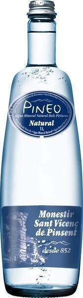 Mineraalwater (1L)