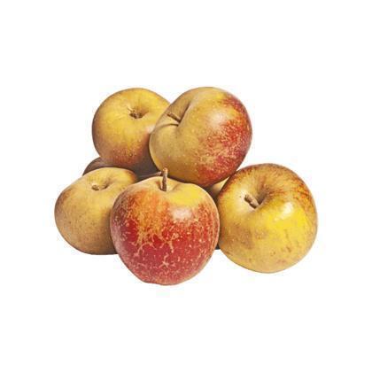Appels Goudrenet