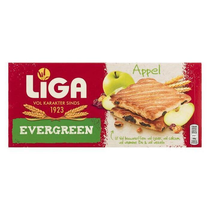 Evergreen appel (Stuk, 6 × 41.7g)