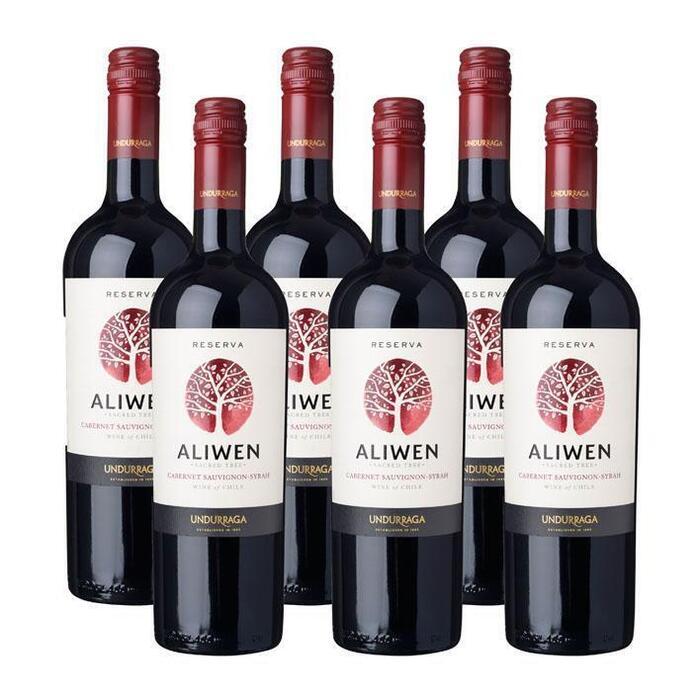 Aliwen Cabernet Sauvignon Syrah Reserva (glas, 6 × 0.75L)
