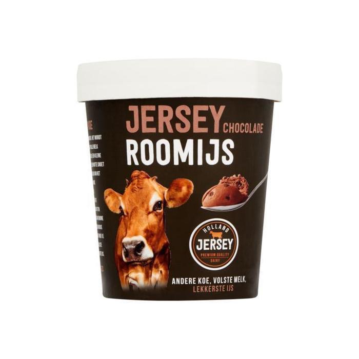 48002 Chocolade roomijs met stukjes chocolade 500ml. (0.5L)