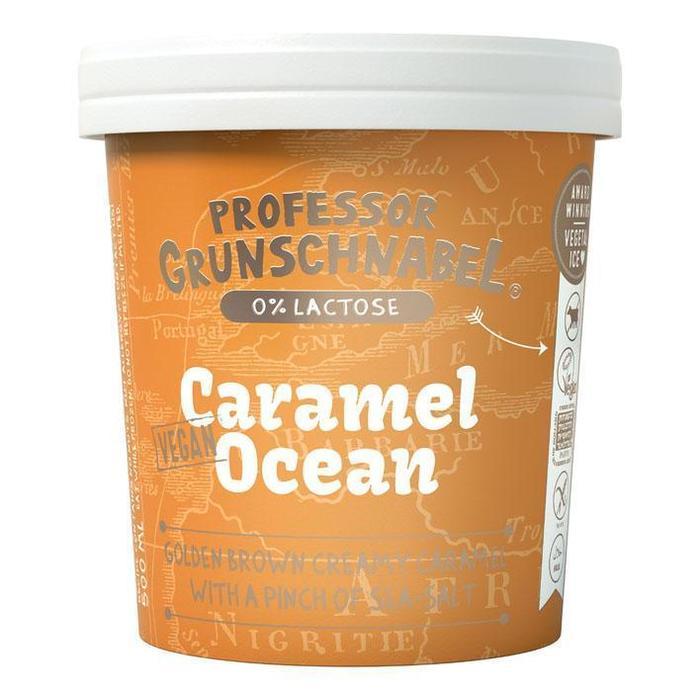 Prof Grunschnabel Naturel vegetal ice caramel (0.5L)