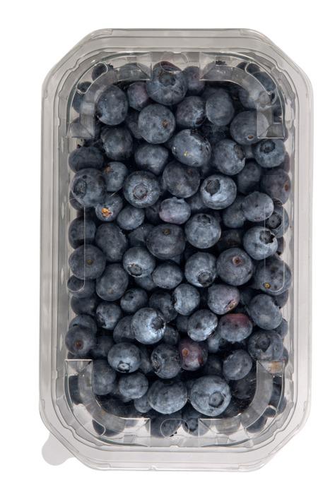 Blauwe Bessen 300 gr BOB's, Klasse 1, doos / deksel (300g)