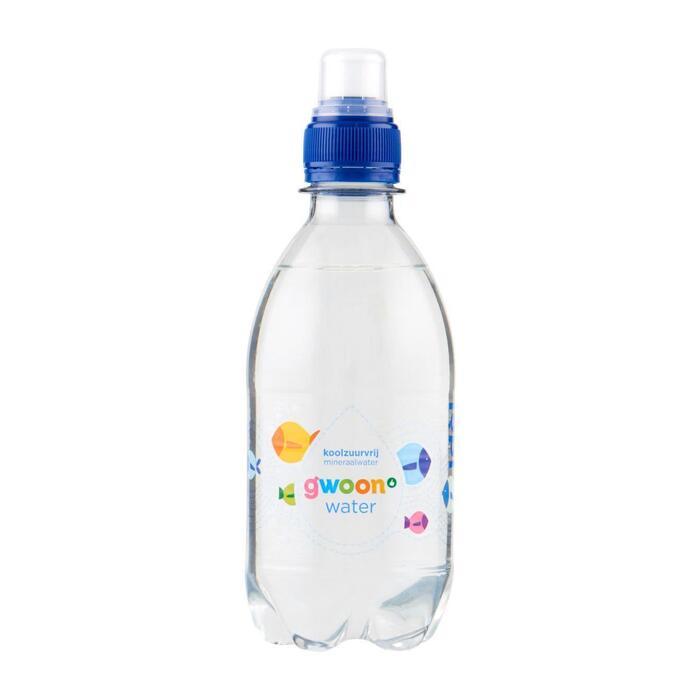 g'woon Mineraalwater (33cl)