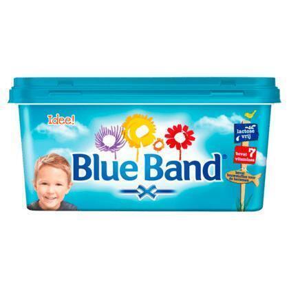 Blue Band Idee! kuip (kuipje, 500g)