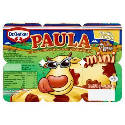 Dr. Oetker Paula Mini Vanille met choco vlekken (Stuk, 6 × 300g)