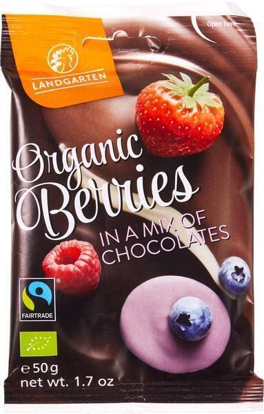 Fruitmix in chocolade (50g)