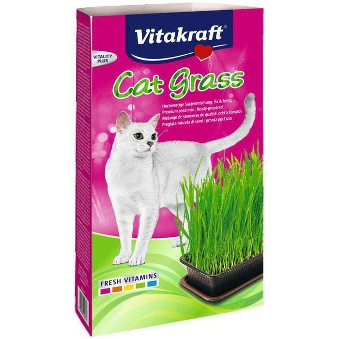 Vitakraft Kattengras (120g)