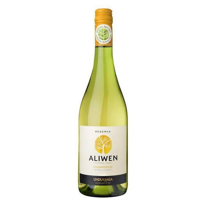 Chardonnay Reserva (fles, 0.75L)