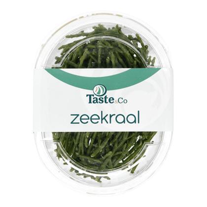 Zeekraal (70g)