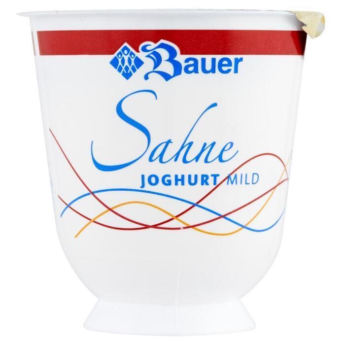 Bauer Roomvruchtenyoghurt assorti (bak, 150g)